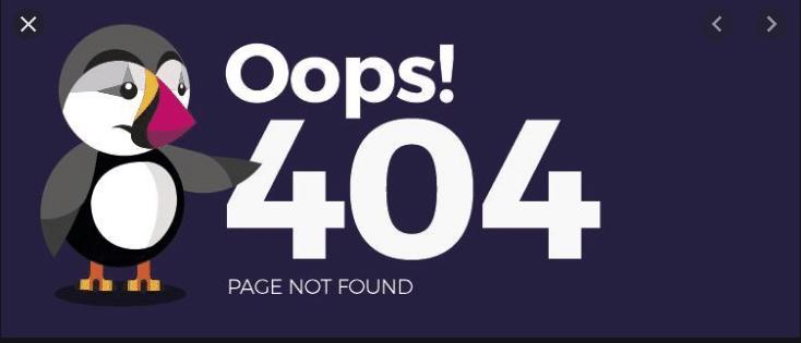the error 404 is a common website mistake in vietnam
